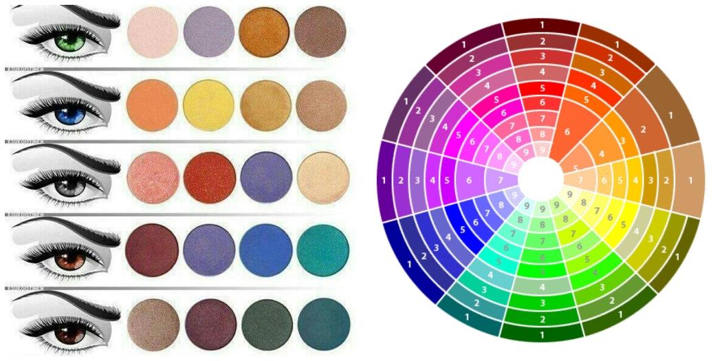 Ombretto e colore degli occhi nouvelle esth tique acad mie - Colore degli occhi diversi ...