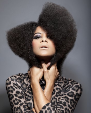 afro-hair-beauty-makeup-capelli