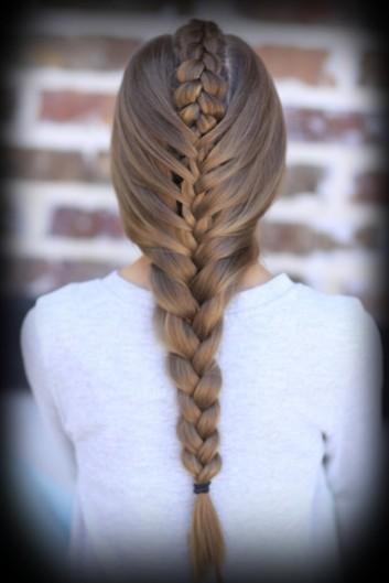 braid-treccia-intrecci-donna-hair-capelli